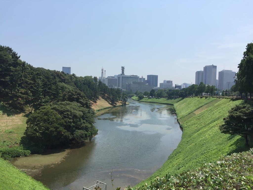 千鳥ヶ淵公園から桜田門前広場まで01