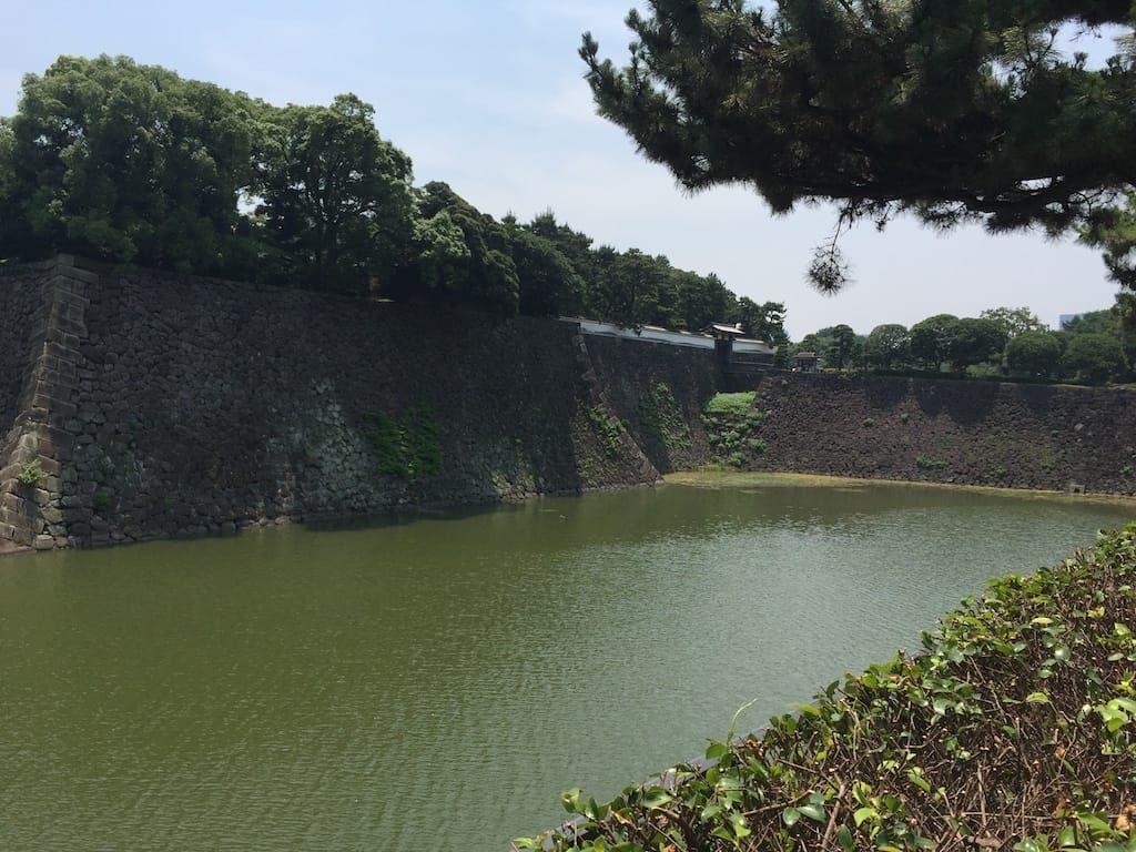 竹橋から千鳥ヶ淵公園まで03