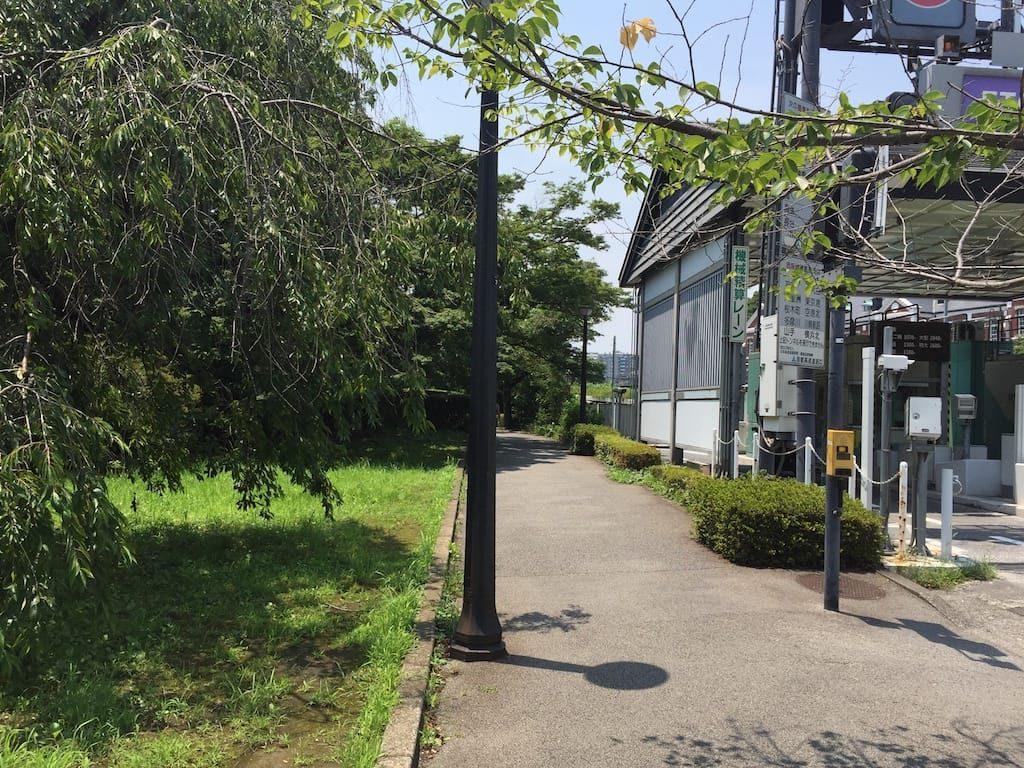 竹橋から千鳥ヶ淵公園まで06