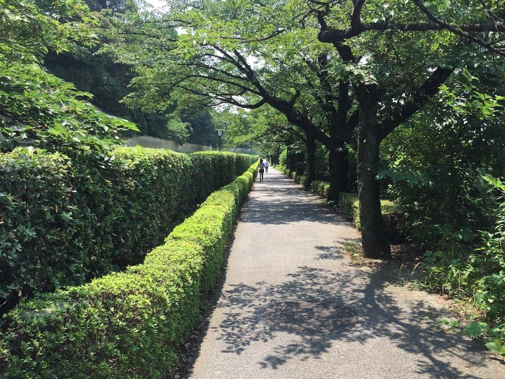 竹橋から千鳥ヶ淵公園まで07