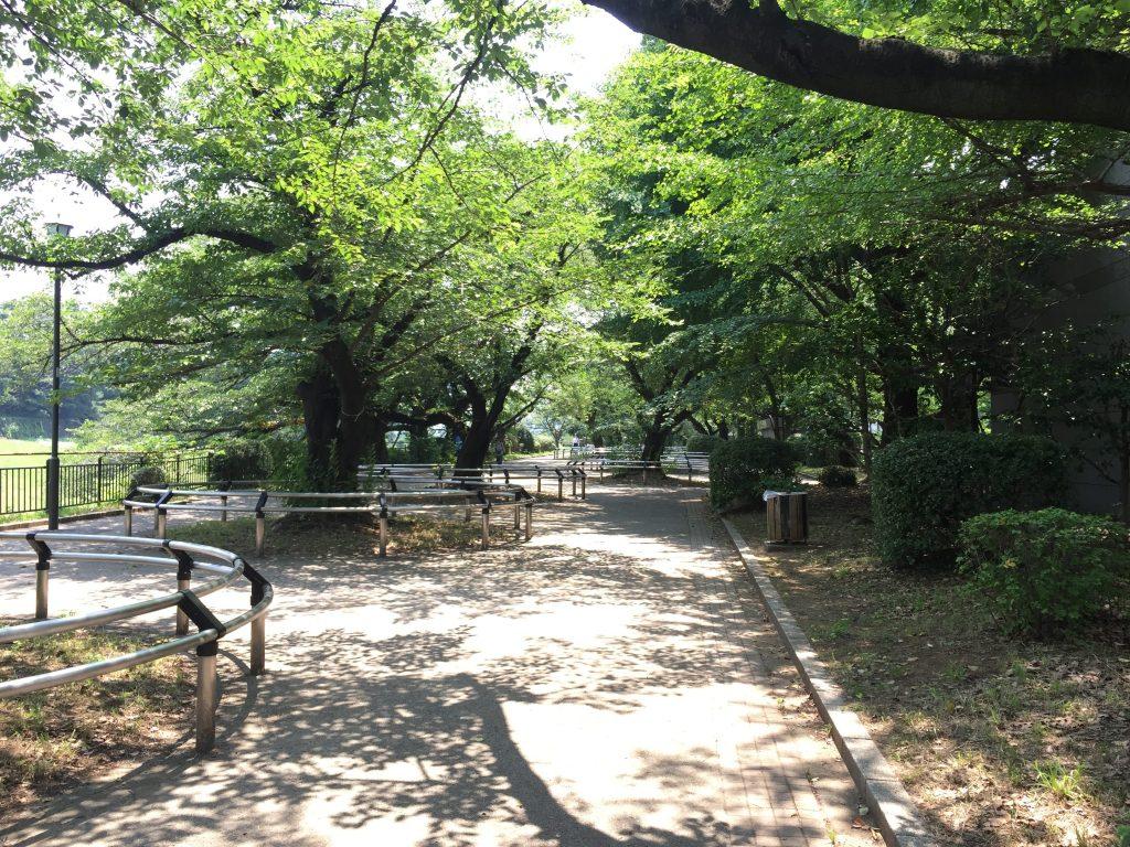 千鳥ヶ淵公園の休憩スポット2
